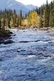 Blue river Royalty Free Stock Images