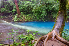 Blue river in Costa Rica Stock Photography