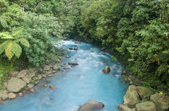 Blue River. The blue river flows through the jungle in Costa Rica Stock Photo