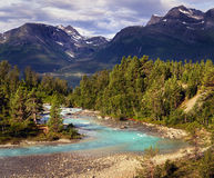 Blue river in northern Norway mountains near fjord. Blue river and forest in northern Norway mountains near fjord Royalty Free Stock Images