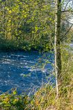 Green banks of blue river. Blue river running through golden trees in fall in bright  forest park Stock Images