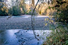 Smooth water in forest. Blue river running through golden trees in fall in bright  forest park Stock Images