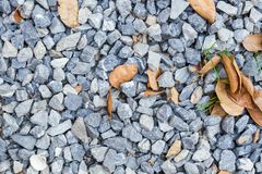 Blue rock texture on the ground, with dry leaves, background. Royalty Free Stock Image