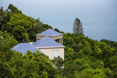 Blue Roofs in Green Tropics Stock Photography