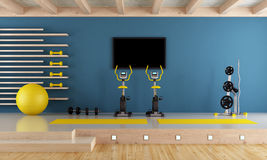 Blue room with gym equipment. Blue room with spinning bike, pilates ball and hand weight - 3d rendering Stock Image
