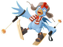 Blue Rooster symbol 2017. Cartoon Cock chicken skiing Stock Photos