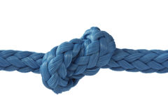 Blue rope with knot. On white background Stock Images