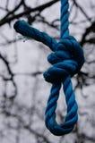Blue rope Stock Image