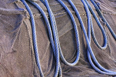 Blue ropes Royalty Free Stock Images