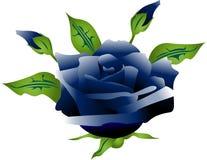Blue Rose. An illustration of a blue rose stock illustration