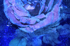 Blue Rose. A wet blue rose with a grunge textural overlay and handwritten script (reads: I cry blue tears. . . a sad blue rose. . .lagrimas azules Royalty Free Stock Photos