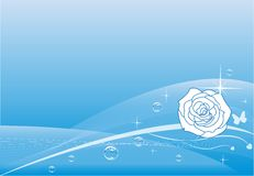 Blue rose background Stock Photography