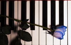 Blue Rose and Candle on Piano Keys Royalty Free Stock Image