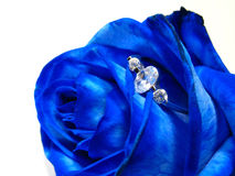 Blue rose with engagement ring Royalty Free Stock Photos