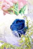 Blue rose in gift flowers. With some small shinning white things Royalty Free Stock Photo