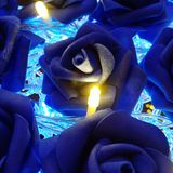 Blue Rose lights display royalty free stock photo