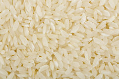 Blue rose rice Stock Photo