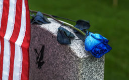 Blue Rose on tombstone. American flag and Blue Rose on a veterans tombstone at an American National Cemetery Stock Photos