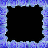 Blue rose vector border Royalty Free Stock Photography