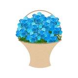 Blue roses Basket. large bouquet of flowers isolated.  royalty free illustration