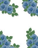 Blue Roses Corner Design template Stock Photo