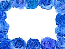 Blue roses frame. Decorative blue roses frame isolated in white Royalty Free Stock Photography