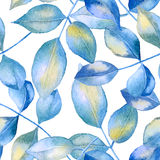 Blue roses leaves background. Royalty Free Stock Photography