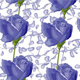 Blue roses. On the tender white background vector illustration