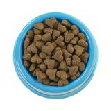 Blue round feeding bowl with dark brown heart shaped dog or cat royalty free stock images