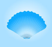 Blue round sea cockleshell. Royalty Free Stock Photos