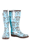 Blue rubber boots isolated Royalty Free Stock Image