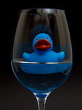Blue rubber duck in a wineglass Royalty Free Stock Photos