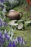 blue salvia flower Stock Photo