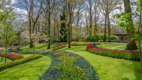 Blue Salvia Flowers Garden In Netherlands. Fresh Blue Salvia Flowers Garden In Netherlands ; Keukenhof Is Amsterdam`s Annual Flower Festival stock images
