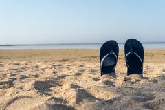 Blue sandal flip flop on yellow sand. Summer fun time and access stock photography