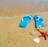 Blue sandals with starfish and shells by the shore Stock Photography