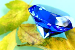 Blue sapphire. With leaves in fall Stock Image