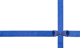 Blue satin bows and ribbons isolated - set 11 Royalty Free Stock Photo