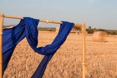 Blue scarf Stock Photos