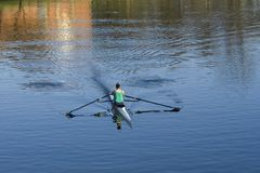 Blue sculler. Sculler or rower on River Clyde in evening sunshine, Glasgow royalty free stock photography