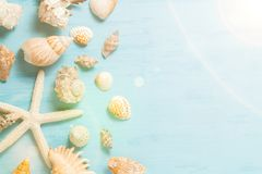 Blue sea background with copy space and seashell border, summer holiday and vacation concept.  royalty free stock image