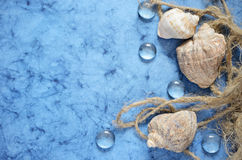 Blue sea background. With shells and a rope Stock Photo