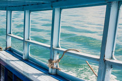 Blue sea on the boat Stock Photo