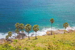 Blue sea and clear sky in summer on the hill with palm tree Stock Photography