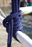 Blue Sea knot Stock Image