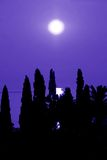 Blue sea moonlight. Moon over blue sky and sea behind black tree silhouettes Stock Photos