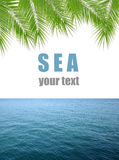 Blue sea with palm Stock Photography