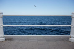 Blue sea with seagull and seafront handrail out of focus Stock Photo