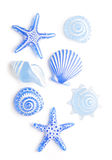Blue sea shell ornaments Stock Images