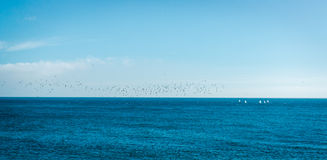 Blue sea and sky background Stock Photos